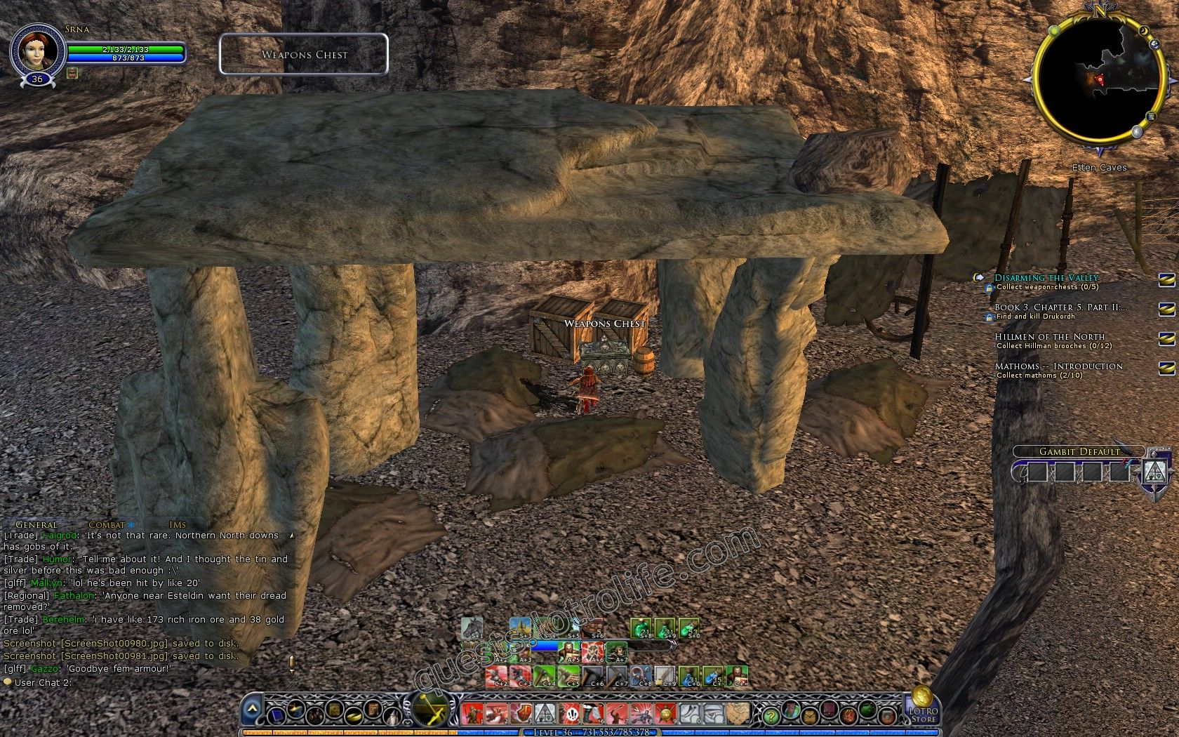 Quest: Disarming the Valley, objective 1, step 1 image 3302 middle size