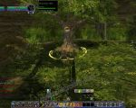 NPC: Walking-tree (Huorn) image 1 thumbnail