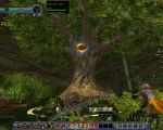 NPC: Walking-tree (Huorn) image 2 thumbnail